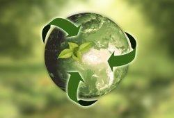 lyon-ecologie